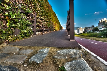 home-path4